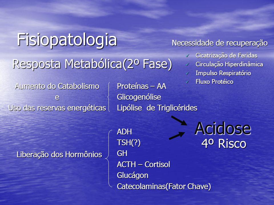 Fisiopatologia Resposta Metabólica(2º Fase) Aumento do Catabolismo e Uso das reservas energéticas Necessidade de recuperação Cicatrização de Feridas C