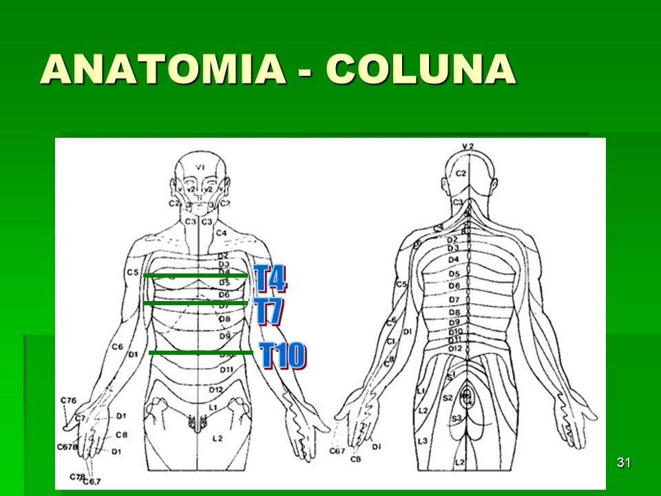 31 ANATOMIA - COLUNA