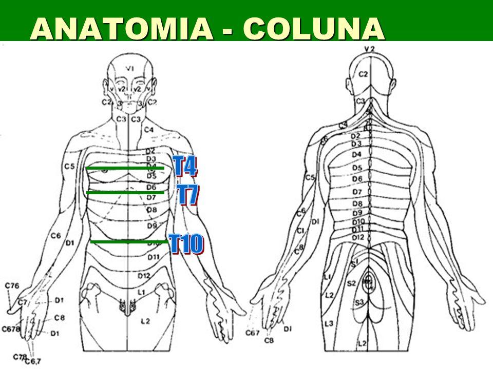 30 Sinais Deformidade Deformidade Inchaço Inchaço Laceração ou contusão Laceração ou contusão Paralisia ou anestesia Paralisia ou anestesia Incontinência Incontinência