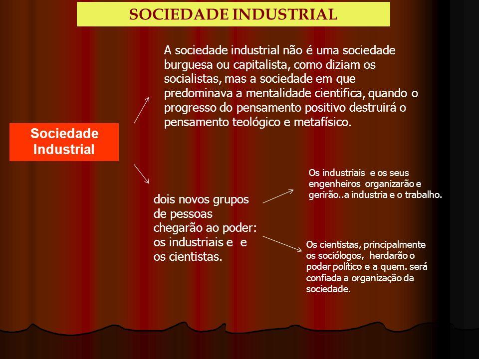 Sociedade Industrial A sociedade industrial não é uma sociedade burguesa ou capitalista, como diziam os socialistas, mas a sociedade em que predominav