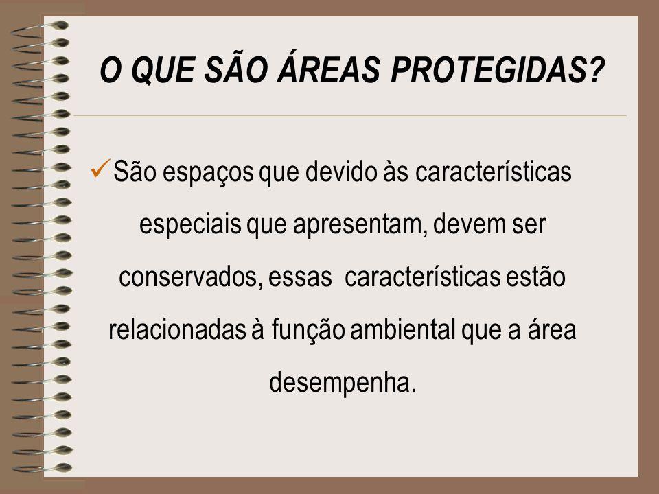 Tipos de Áreas Protegidas ÁREAS DE PRESERVAÇÃO PERMANENTE - APPs Nascentes Margens de rios Topos de morros Restingas como fixadoras de dunas ou estabilizadoras de mangue Encostas com declividade superior a 45% Bordas de tabuleiros ou chapadas em altitude superior a 1800m RESERVA LEGAL UNIDADES DE CONSERVAÇÃO RESERVAS DA BIOSFERA