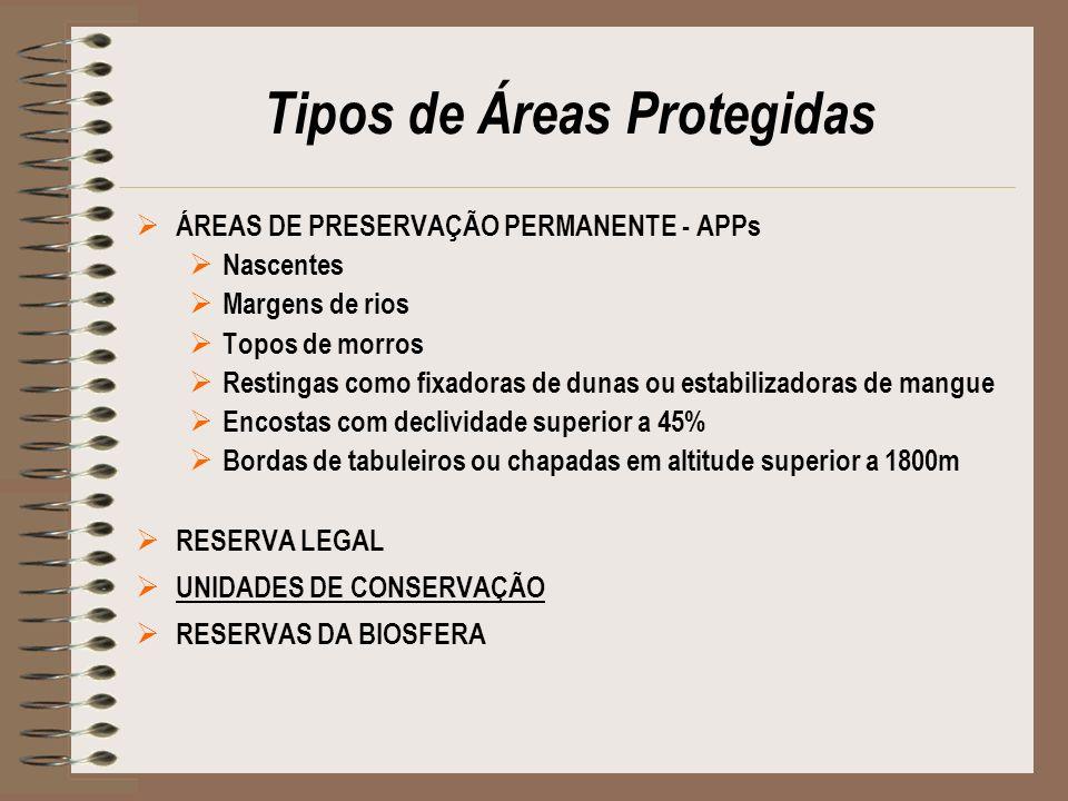 Tipos de Áreas Protegidas ÁREAS DE PRESERVAÇÃO PERMANENTE - APPs Nascentes Margens de rios Topos de morros Restingas como fixadoras de dunas ou estabi