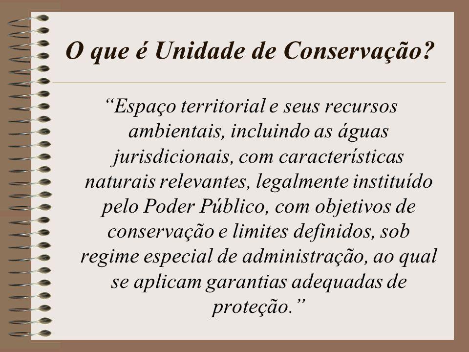 Objetivos das Unidades de Conservação Conservação de ecossistemas, das paisagens e dos recursos naturais, Conservação da biodiversidade e dos recursos genéticos, Promoção da pesquisa científica, Promoção da educação ambiental, do ecoturismo e da recreação em contato com a natureza, Planejamento territorial e ordenamento do processo de ocupação do solo.