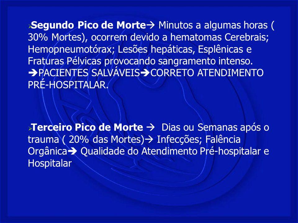 Segundo Pico de Morte Minutos a algumas horas ( 30% Mortes), ocorrem devido a hematomas Cerebrais; Hemopneumotórax; Lesões hepáticas, Esplênicas e Fra