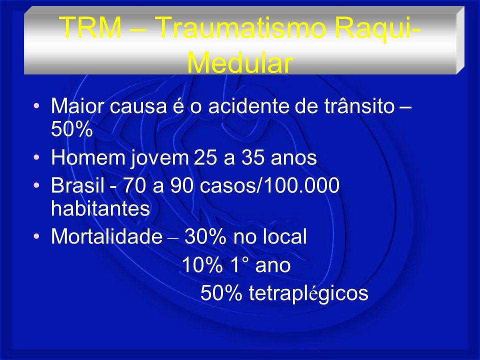 Maior causa é o acidente de trânsito – 50% Homem jovem 25 a 35 anos Brasil - 70 a 90 casos/100.000 habitantes Mortalidade – 30% no local 10% 1° ano 50