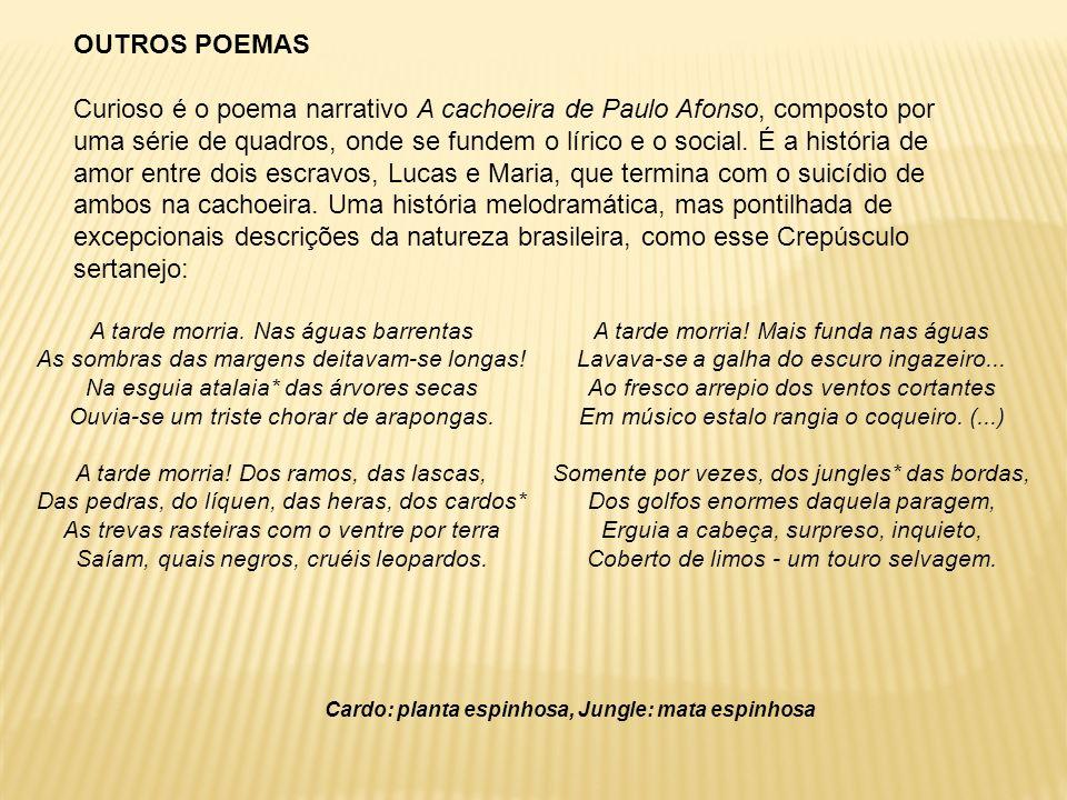 OUTROS POEMAS Curioso é o poema narrativo A cachoeira de Paulo Afonso, composto por uma série de quadros, onde se fundem o lírico e o social. É a hist