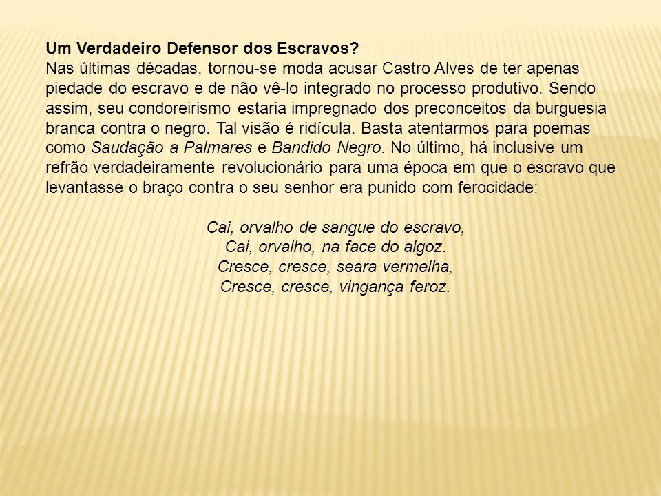 Um Verdadeiro Defensor dos Escravos? Nas últimas décadas, tornou-se moda acusar Castro Alves de ter apenas piedade do escravo e de não vê-lo integrado
