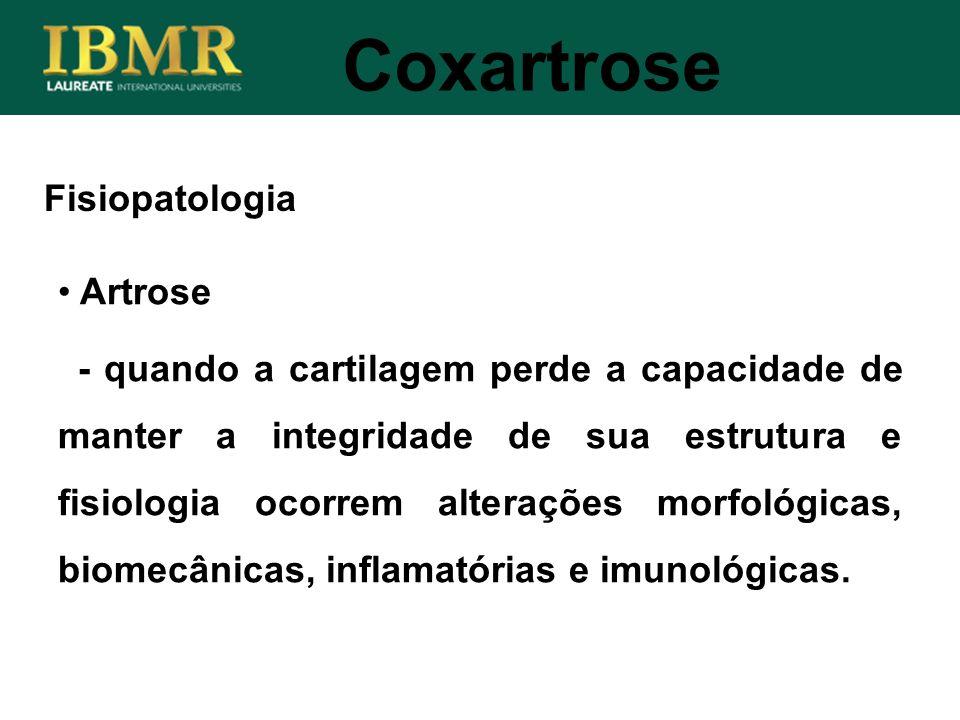 Fisiopatologia Coxartrose Artrose - quando a cartilagem perde a capacidade de manter a integridade de sua estrutura e fisiologia ocorrem alterações mo