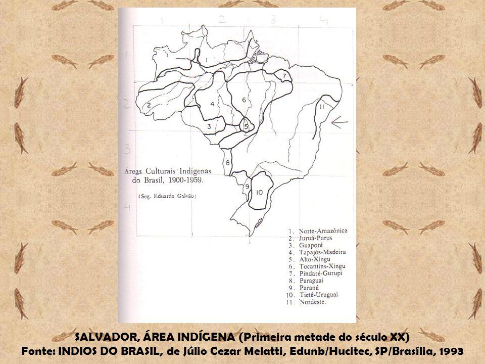 SALVADOR, ÁREA INDÍGENA (Primeira metade do século XX) Fonte: INDIOS DO BRASIL, de Júlio Cezar Melatti, Edunb/Hucitec, SP/Brasília, 1993