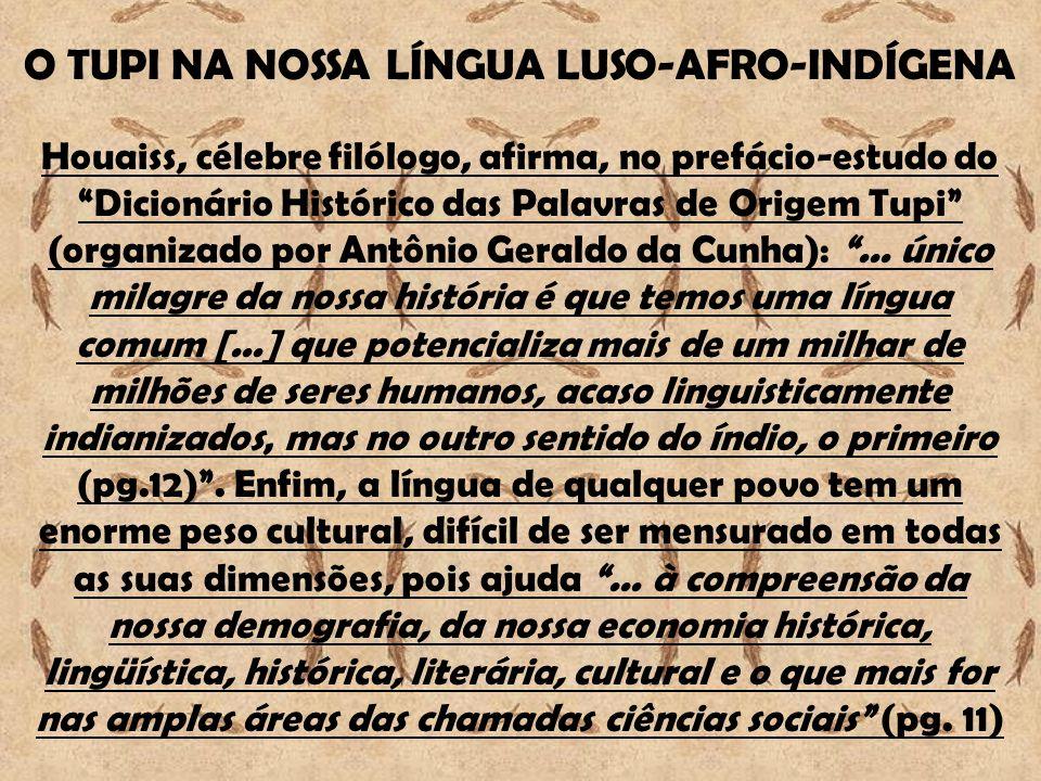 O TUPI NA NOSSA LÍNGUA LUSO-AFRO-INDÍGENA Houaiss, célebre filólogo, afirma, no prefácio-estudo do Dicionário Histórico das Palavras de Origem Tupi (o
