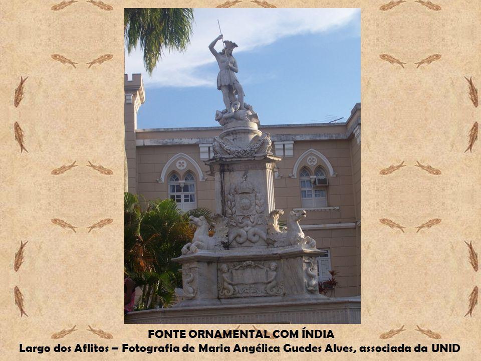 FONTE ORNAMENTAL COM ÍNDIA Largo dos Aflitos – Fotografia de Maria Angélica Guedes Alves, associada da UNID