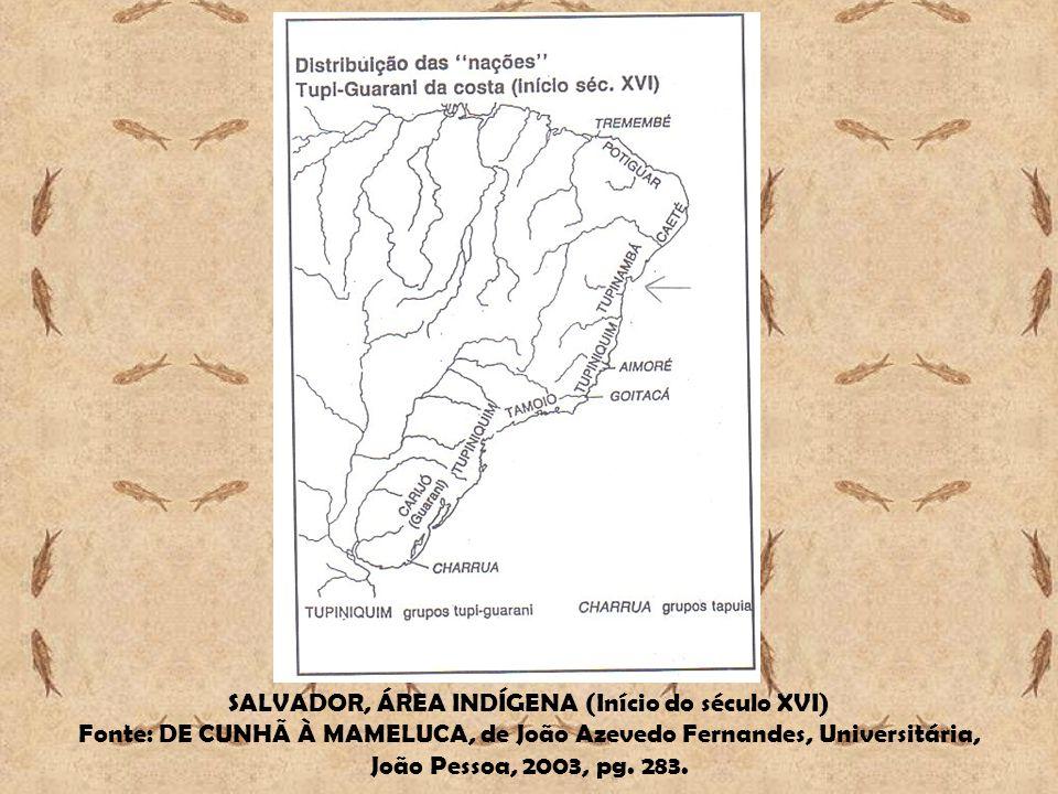 SALVADOR, ÁREA INDÍGENA (Início do século XVI) Fonte: DE CUNHÃ À MAMELUCA, de João Azevedo Fernandes, Universitária, João Pessoa, 2003, pg. 283.