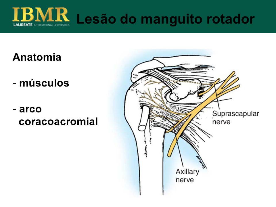 Anatomia - músculos - arco coracoacromial Lesão do manguito rotador