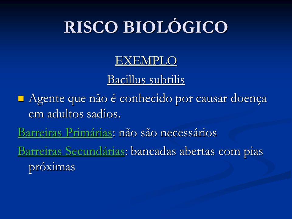 RISCO BIOLÓGICO EXEMPLO Bacillus subtilis Agente que não é conhecido por causar doença em adultos sadios.