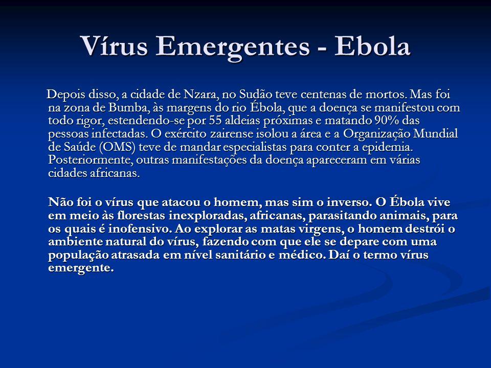 Vírus Emergentes - Ebola Depois disso, a cidade de Nzara, no Sudão teve centenas de mortos.