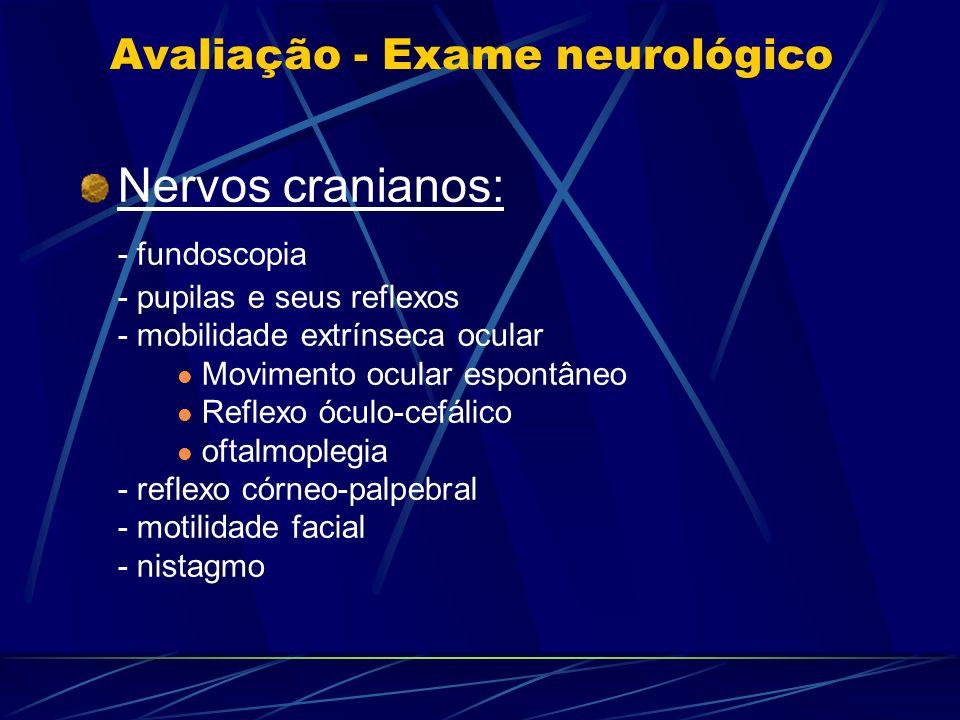 Avaliação - Exame neurológico Nervos cranianos: - fundoscopia - pupilas e seus reflexos - mobilidade extrínseca ocular Movimento ocular espontâneo Ref