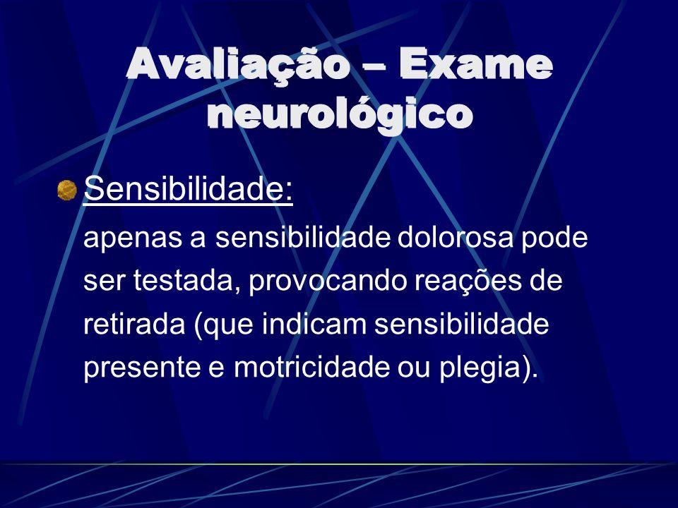 Avaliação – Exame neurológico Sensibilidade: apenas a sensibilidade dolorosa pode ser testada, provocando reações de retirada (que indicam sensibilida