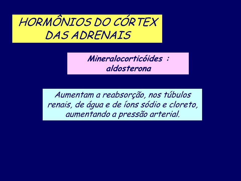 HORMÔNIOS DO CÓRTEX DAS ADRENAIS Mineralocorticóides : aldosterona Aumentam a reabsorção, nos túbulos renais, de água e de íons sódio e cloreto, aumen