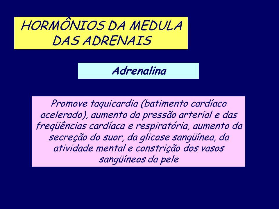 Adrenalina HORMÔNIOS DA MEDULA DAS ADRENAIS Promove taquicardia (batimento cardíaco acelerado), aumento da pressão arterial e das freqüências cardíaca
