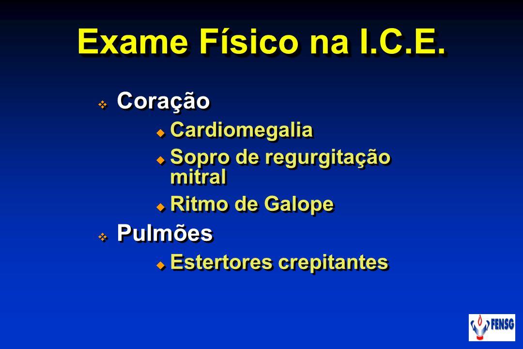 Exame Físico na I.C.E. Coração Cardiomegalia Sopro de regurgitação mitral Ritmo de Galope Pulmões Estertores crepitantes Coração Cardiomegalia Sopro d