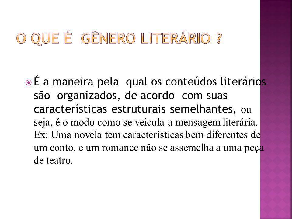 É a maneira pela qual os conteúdos literários são organizados, de acordo com suas características estruturais semelhantes, ou seja, é o modo como se v