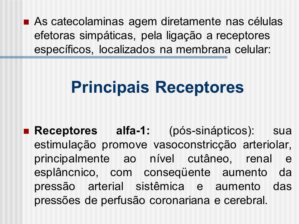 As catecolaminas agem diretamente nas células efetoras simpáticas, pela ligação a receptores específicos, localizados na membrana celular: Principais