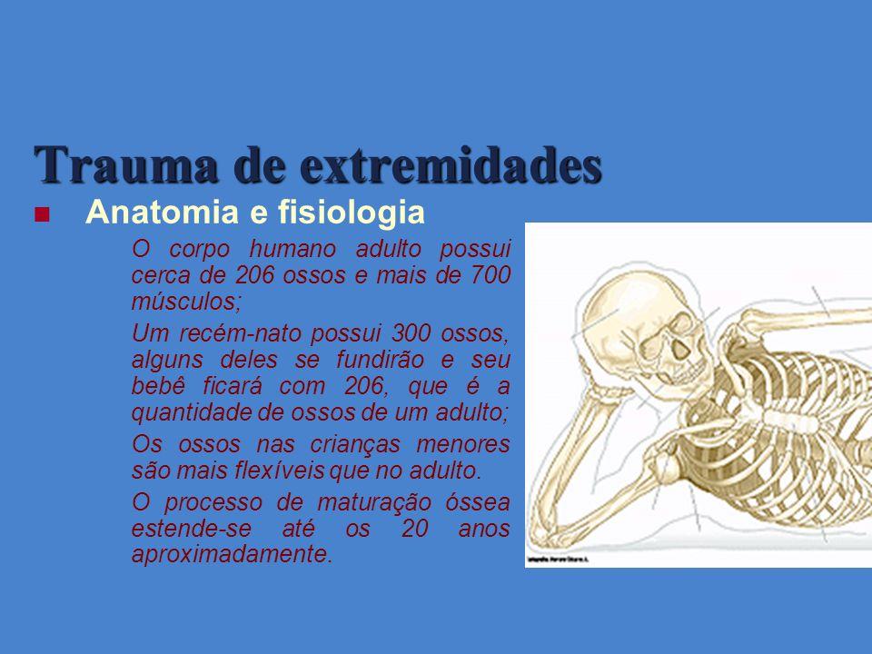 Trauma de extremidades Anatomia e fisiologia O corpo humano adulto possui cerca de 206 ossos e mais de 700 músculos; Um recém-nato possui 300 ossos, a