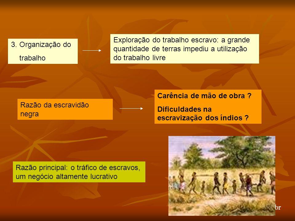 arnaldolemos@uol.com.br 3.