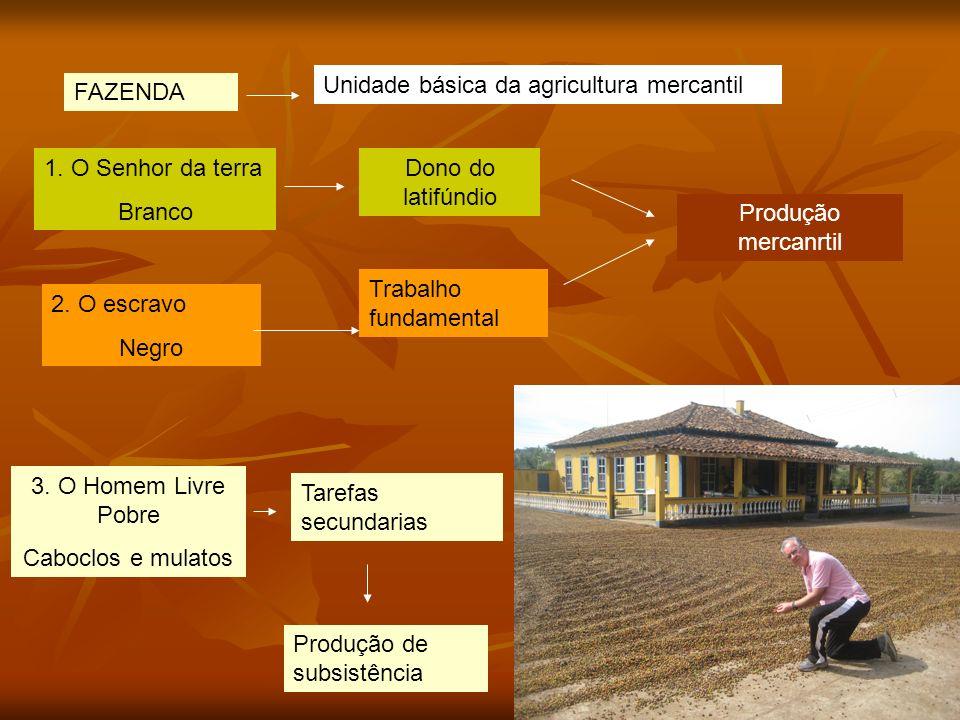 arnaldolemos@uol.com.br FAZENDA Unidade básica da agricultura mercantil 1.