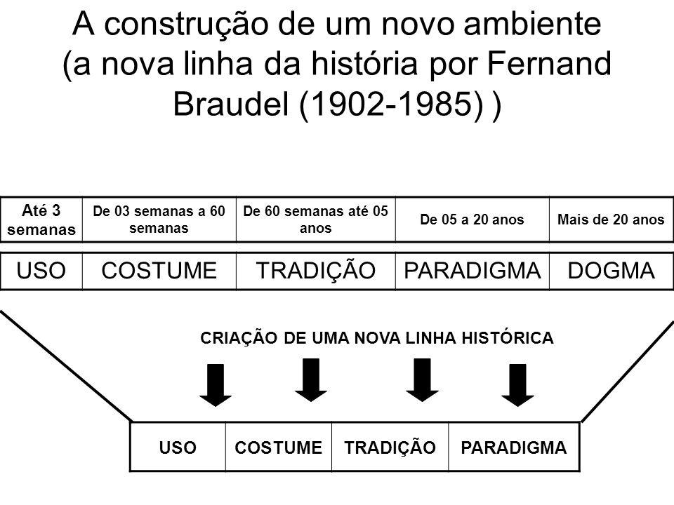 A construção de um novo ambiente (a nova linha da história por Fernand Braudel (1902-1985) ) USOCOSTUMETRADIÇÃOPARADIGMADOGMA Até 3 semanas De 03 semanas a 60 semanas De 60 semanas até 05 anos De 05 a 20 anosMais de 20 anos USOCOSTUMETRADIÇÃOPARADIGMA CRIAÇÃO DE UMA NOVA LINHA HISTÓRICA