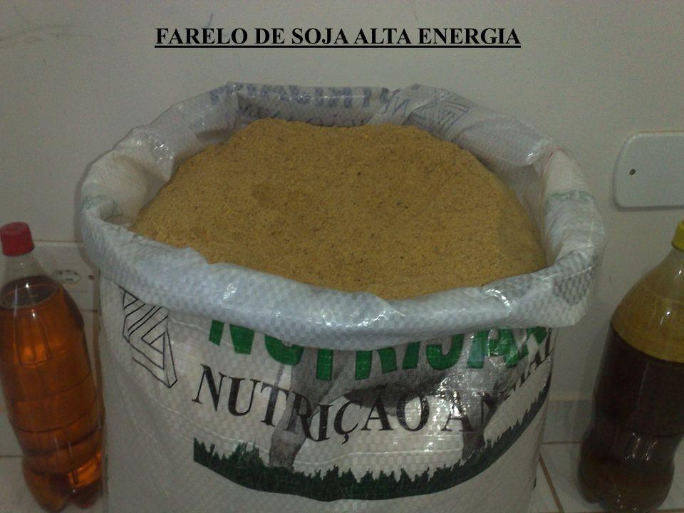 FARELO DE SOJA ALTA ENERGIA