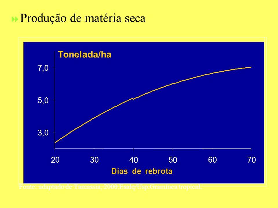 Produção de matéria seca Fonte: adaptado de Tamassia, 2000.Esalq/Usp.Gramínea tropical. 3,0 5,0 7,0 203040506070 Dias de rebrota Tonelada/ha