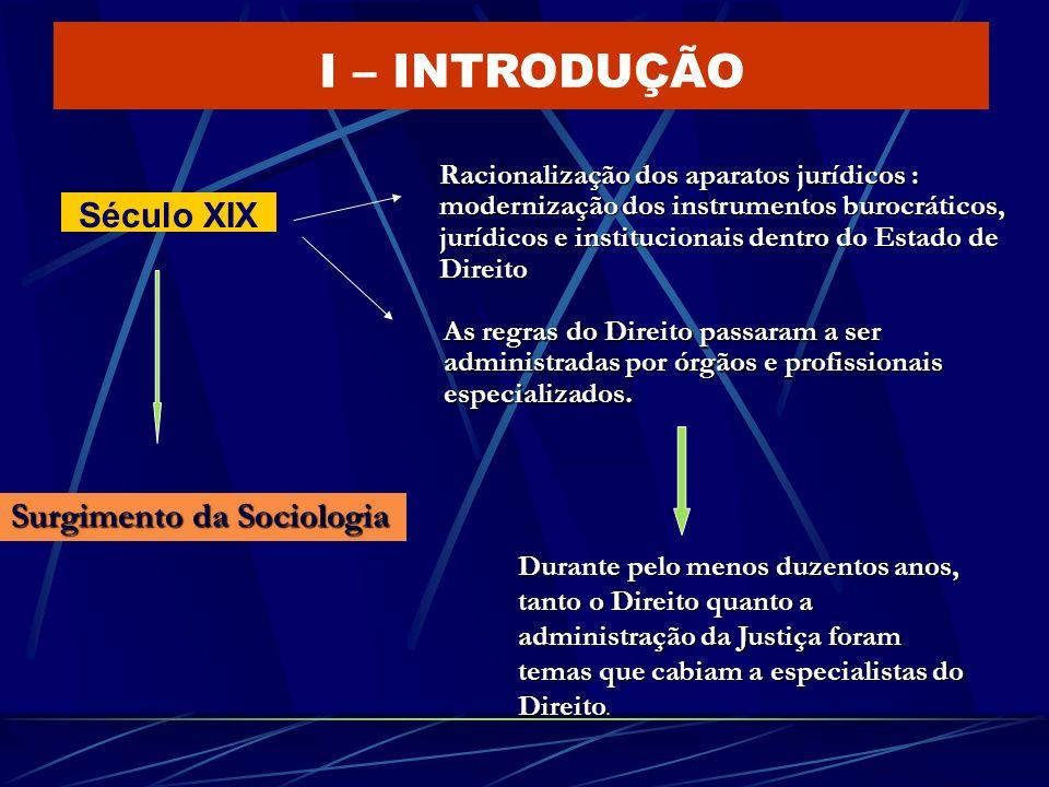 I – INTRODUÇÃO Século XIX Surgimento da Sociologia Racionalização dos aparatos jurídicos : modernização dos instrumentos burocráticos, jurídicos e ins