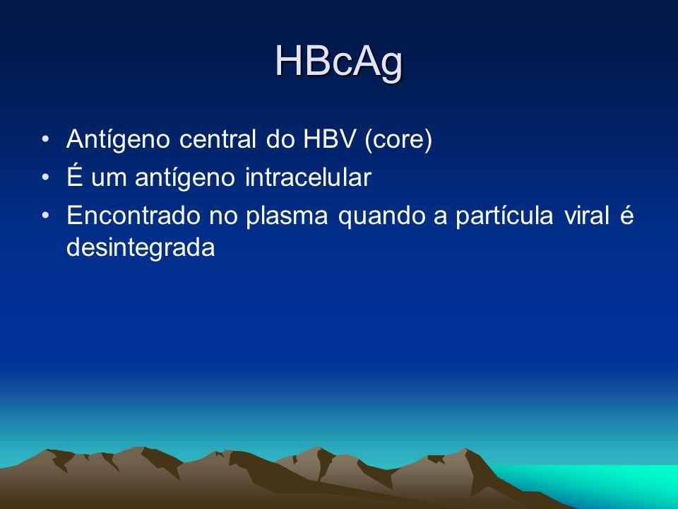 HBcAg Antígeno central do HBV (core) É um antígeno intracelular Encontrado no plasma quando a partícula viral é desintegrada