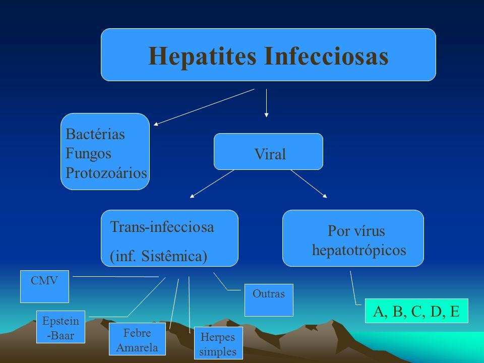 Viral Trans-infecciosa (inf. Sistêmica) Por vírus hepatotrópicos CMV Epstein -Baar Febre Amarela Herpes simples Outras A, B, C, D, E Hepatites Infecci