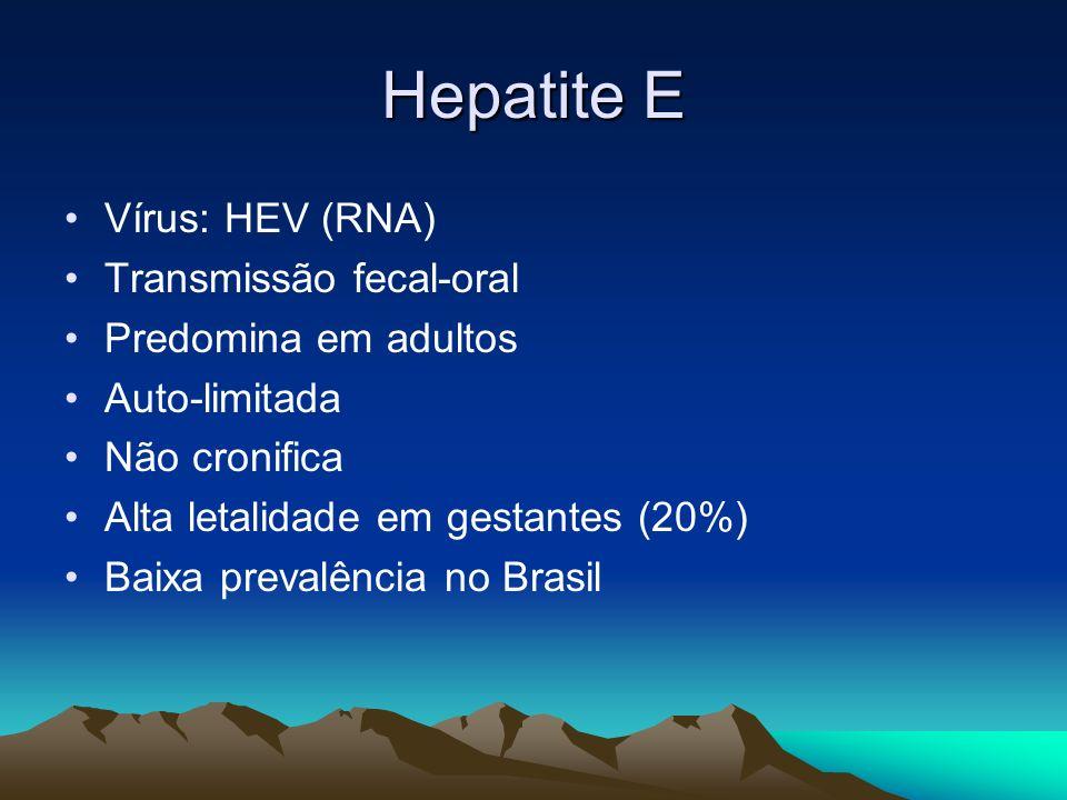 Vírus: HEV (RNA) Transmissão fecal-oral Predomina em adultos Auto-limitada Não cronifica Alta letalidade em gestantes (20%) Baixa prevalência no Brasi