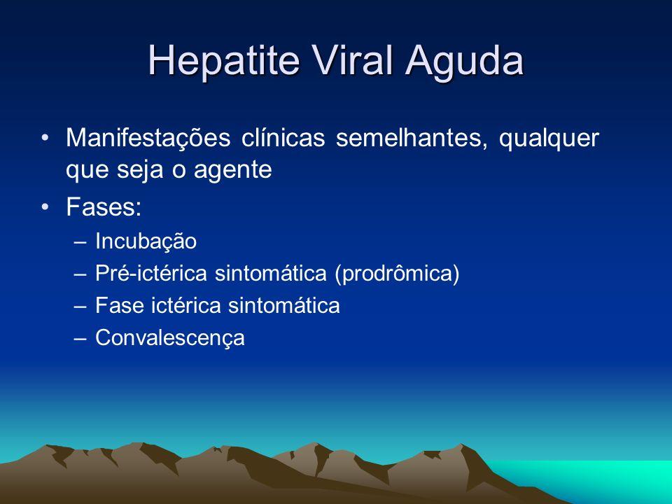 Hepatite Viral Aguda Manifestações clínicas semelhantes, qualquer que seja o agente Fases: –Incubação –Pré-ictérica sintomática (prodrômica) –Fase ict