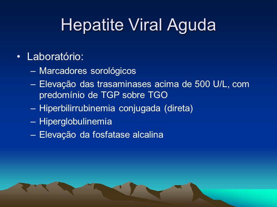 Hepatite Viral Aguda Laboratório: –Marcadores sorológicos –Elevação das trasaminases acima de 500 U/L, com predomínio de TGP sobre TGO –Hiperbilirrubi