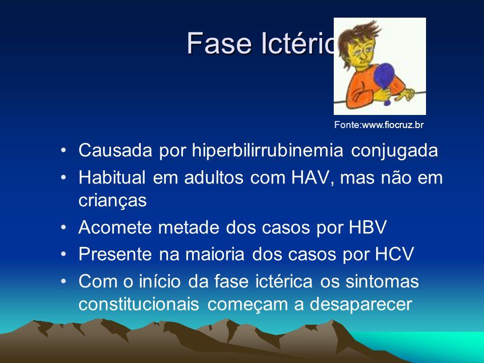 Fase Ictérica Fase Ictérica Causada por hiperbilirrubinemia conjugada Habitual em adultos com HAV, mas não em crianças Acomete metade dos casos por HB