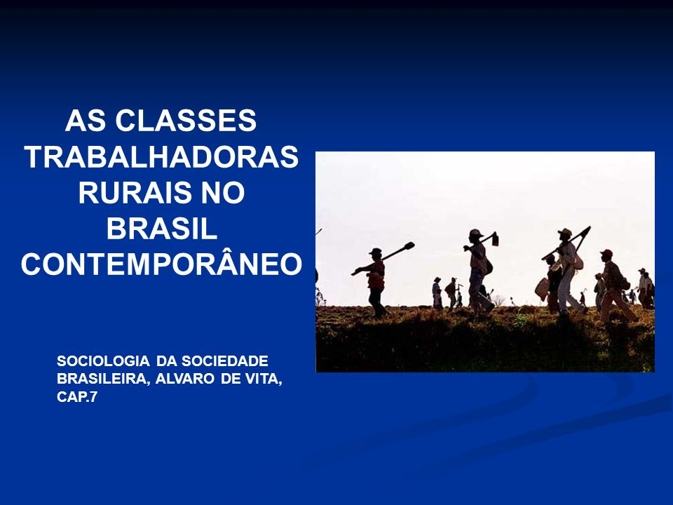 AS CLASSES TRABALHADORAS RURAIS NO BRASIL CONTEMPORÂNEO SOCIOLOGIA DA SOCIEDADE BRASILEIRA, ALVARO DE VITA, CAP.7