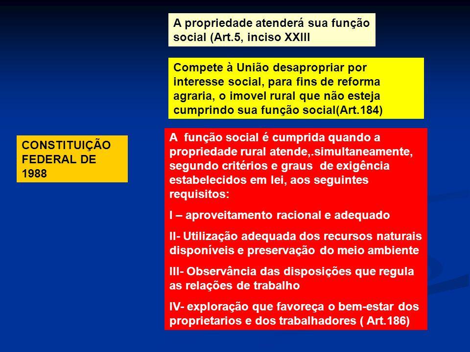 CONSTITUIÇÃO FEDERAL DE 1988 A propriedade atenderá sua função social (Art.5, inciso XXIII A função social é cumprida quando a propriedade rural atend