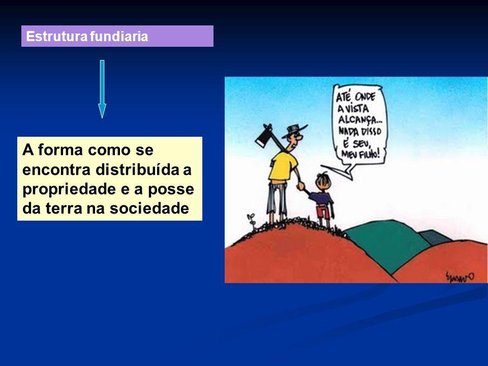 Estrutura fundiaria A forma como se encontra distribuída a propriedade e a posse da terra na sociedade