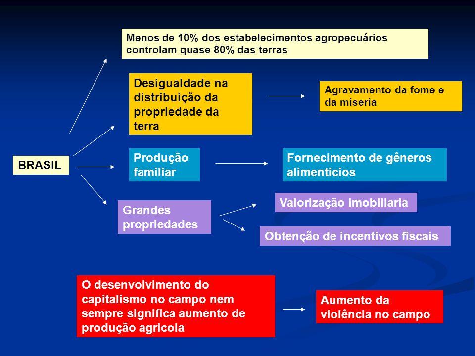 BRASIL Menos de 10% dos estabelecimentos agropecuários controlam quase 80% das terras Desigualdade na distribuição da propriedade da terra Agravamento