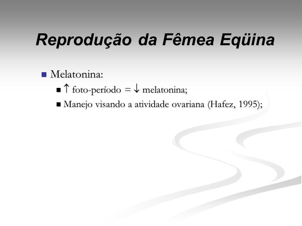 Reprodução da Fêmea Eqüina LH: LH: Vida média; Vida média; Função: Função: Ação no processo de ovulação; Ação no processo de ovulação; Padrão de secre
