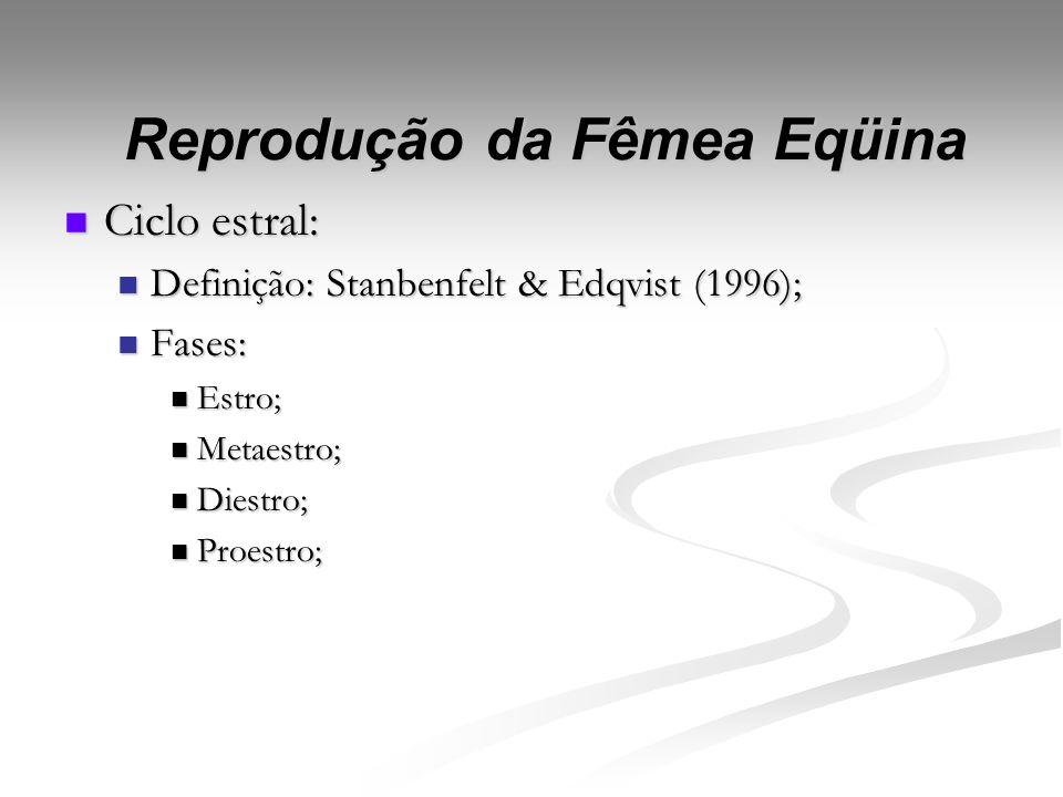 Reprodução da Fêmea Eqüina Caracterização da Reprodução da égua: Caracterização da Reprodução da égua: Poliéstricas estacionais: Poliéstricas estacion