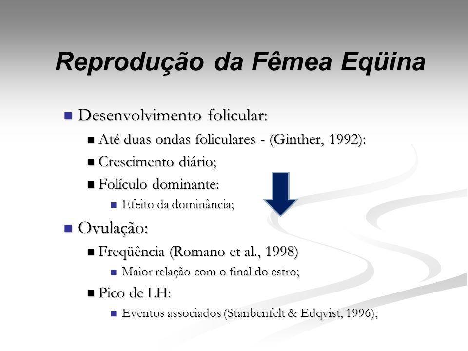 Reprodução da Fêmea Eqüina Fases (Andrade, 1986): Fases (Andrade, 1986): Folicular: Folicular: Folículo dominante de 30 mm (Ginther, 1992); Folículo d