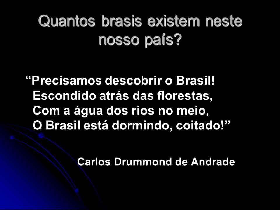 Quantos brasis existem neste nosso país? Precisamos descobrir o Brasil! Escondido atrás das florestas, Com a água dos rios no meio, O Brasil está dorm