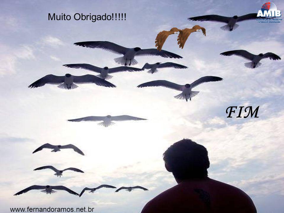 FIM www.fernandoramos.net.br Muito Obrigado!!!!!