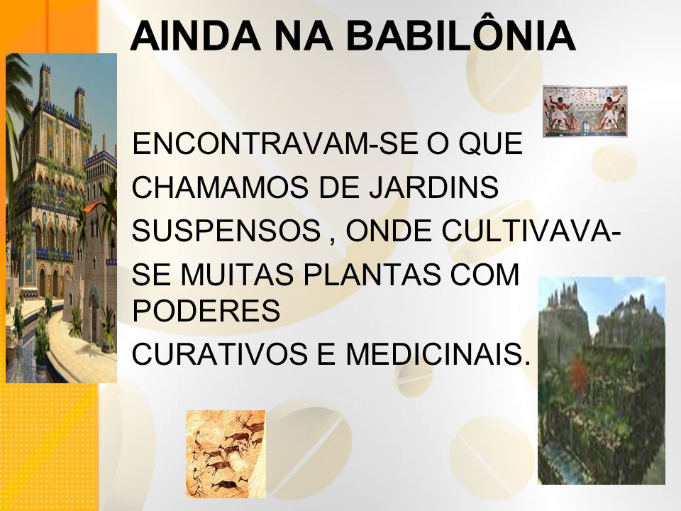 AINDA NA BABILÔNIA ENCONTRAVAM-SE O QUE CHAMAMOS DE JARDINS SUSPENSOS, ONDE CULTIVAVA- SE MUITAS PLANTAS COM PODERES CURATIVOS E MEDICINAIS.