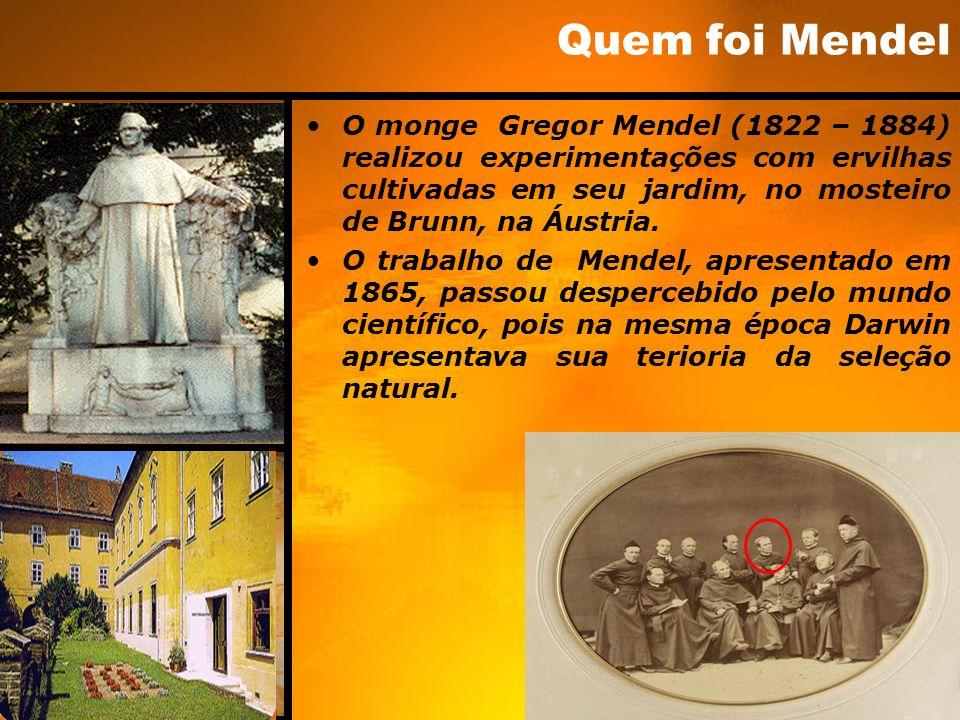 Quem foi Mendel O monge Gregor Mendel (1822 – 1884) realizou experimentações com ervilhas cultivadas em seu jardim, no mosteiro de Brunn, na Áustria.
